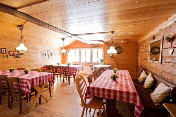 Hostal Mountain  Gimmelwald