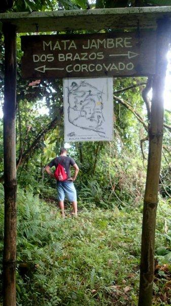 Hostal Bolita Rainforest