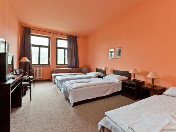 Hotel Branik