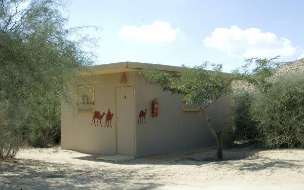 Negev Camel Ranch