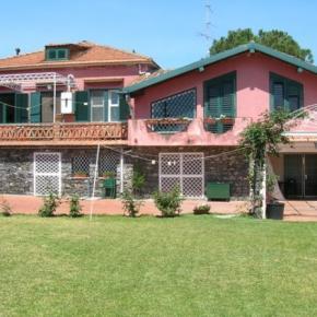 Hostales y Albergues - BnB La Casa del Ficus