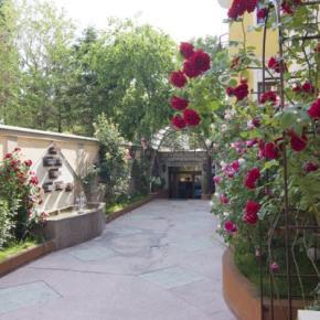 Hostales y Albergues - Hotel Michelangelo