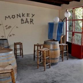 Hostales y Albergues - Hostal All In Mendoza Monkey