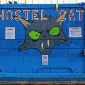 Hostales y Albergues - Hostal  Cat