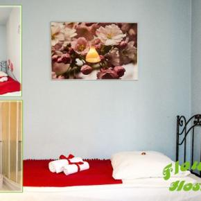 Hostales y Albergues - Hostal  Flower
