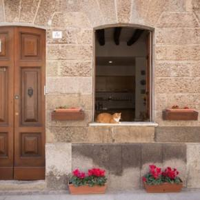 Hostales y Albergues - Biddanòa Bed and Breakfast