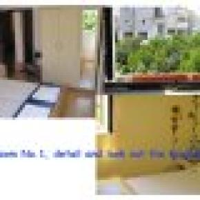 Jele and Luka's Apartments (A-2)