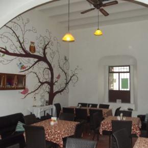 Hostales y Albergues - Itza Hotel y Hostal
