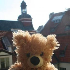 Hostales y Albergues - Hostal Teddy Bear  Riga