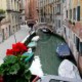 Residenza Ca' Dario and Corte Canal