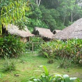 Hostales y Albergues - Natural reserve Heliconia Ecolodge