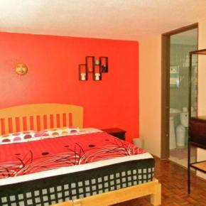 Hostales y Albergues - BnB Mexico Roma Norte