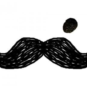 Hostales y Albergues - Hostal Moustache  Jaipur
