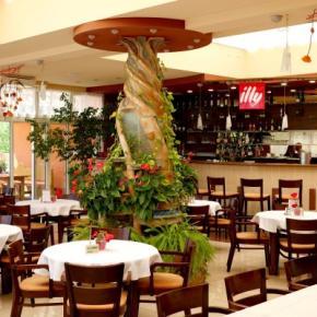Hostales y Albergues - Hotel Baronka