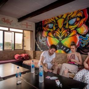 Hostales y Albergues - Backpacker Panda Friends - Agra