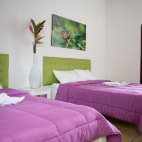 Hostales y Albergues - Cocoon Hotel