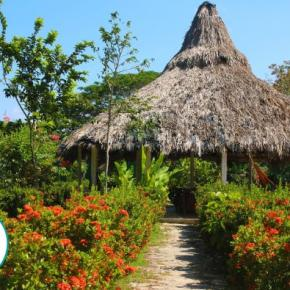 Hostales y Albergues - GUADALUPE BEACH and ECOLODGE