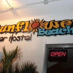 Hostales y Albergues - Hostal Sunflower Beach Backpacker