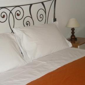 Hostales y Albergues - Hotel Athena