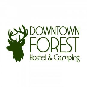 Hostales y Albergues - Hostal Downtown Forest  and Camping