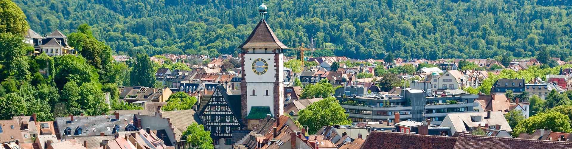 Friburgo - Hoteles baratos en Friburgo. Mapas de Friburgo, Fotos y comentarios de cada Hotel en Friburgo.