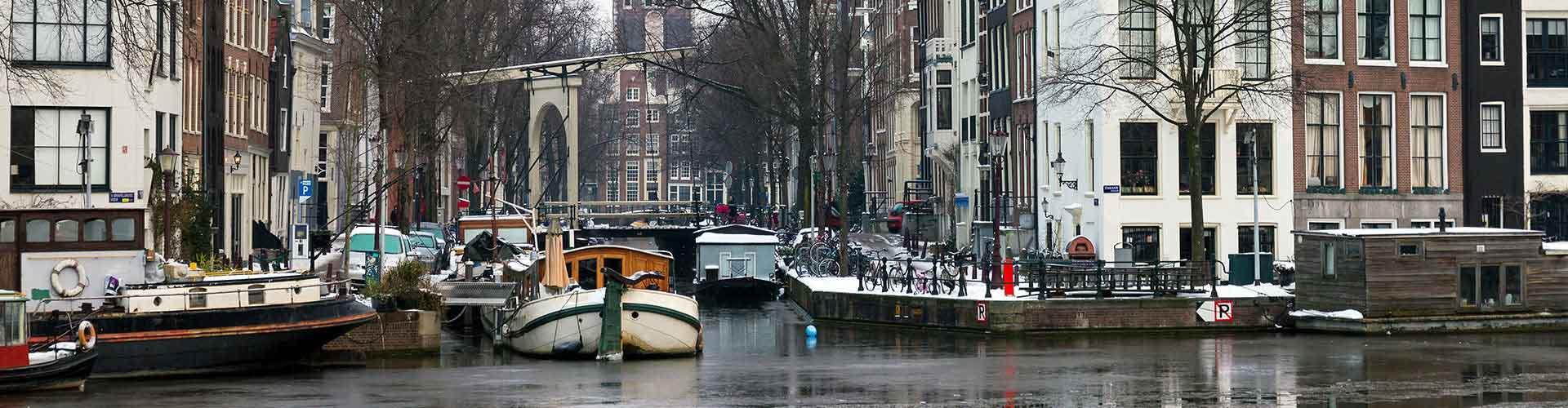 Amsterdam - Campamentos en el distrito Amsterdam Oud Zuid. Mapas de Amsterdam, Fotos y comentarios de cada Campamento en Amsterdam.