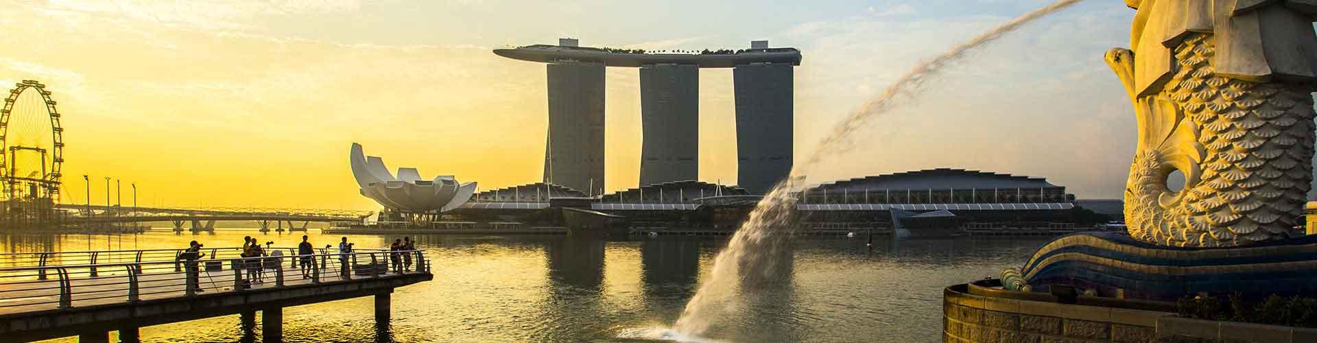 Singapur - Apartamentos en el distrito Outram. Mapas de Singapur, Fotos y comentarios de cada Apartamento en Singapur.