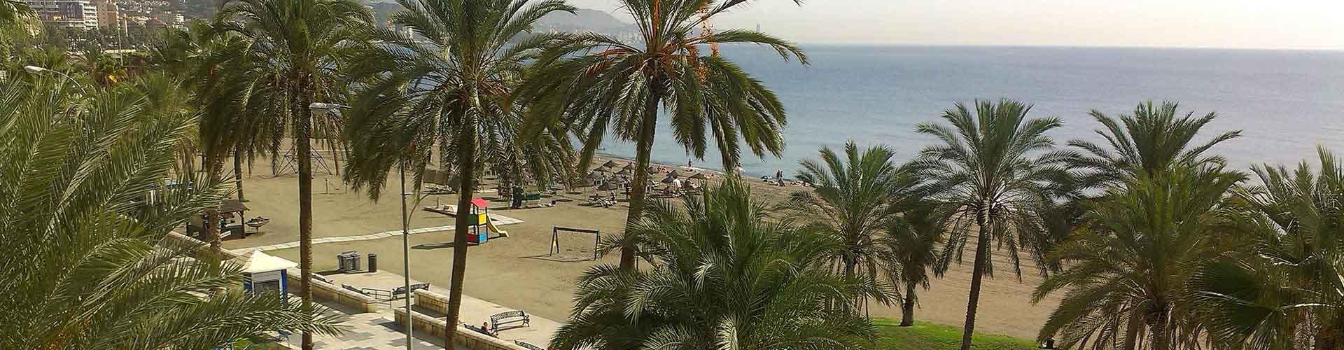 Málaga - Hoteles baratos en el distrito Zona centro de Málaga. Mapas de Málaga, Fotos y comentarios de cada Hotel barato en Málaga.